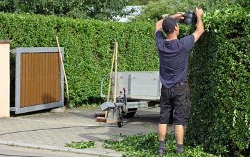 professional Omagh hedge cutting services