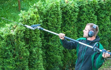 Omagh hedge trimming costs