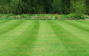 professional Omagh grass cutting services