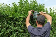 free Omagh hedge trimming quotes