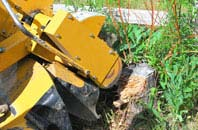 Omagh tree stump grinding services