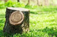 Omagh tree stump removal services